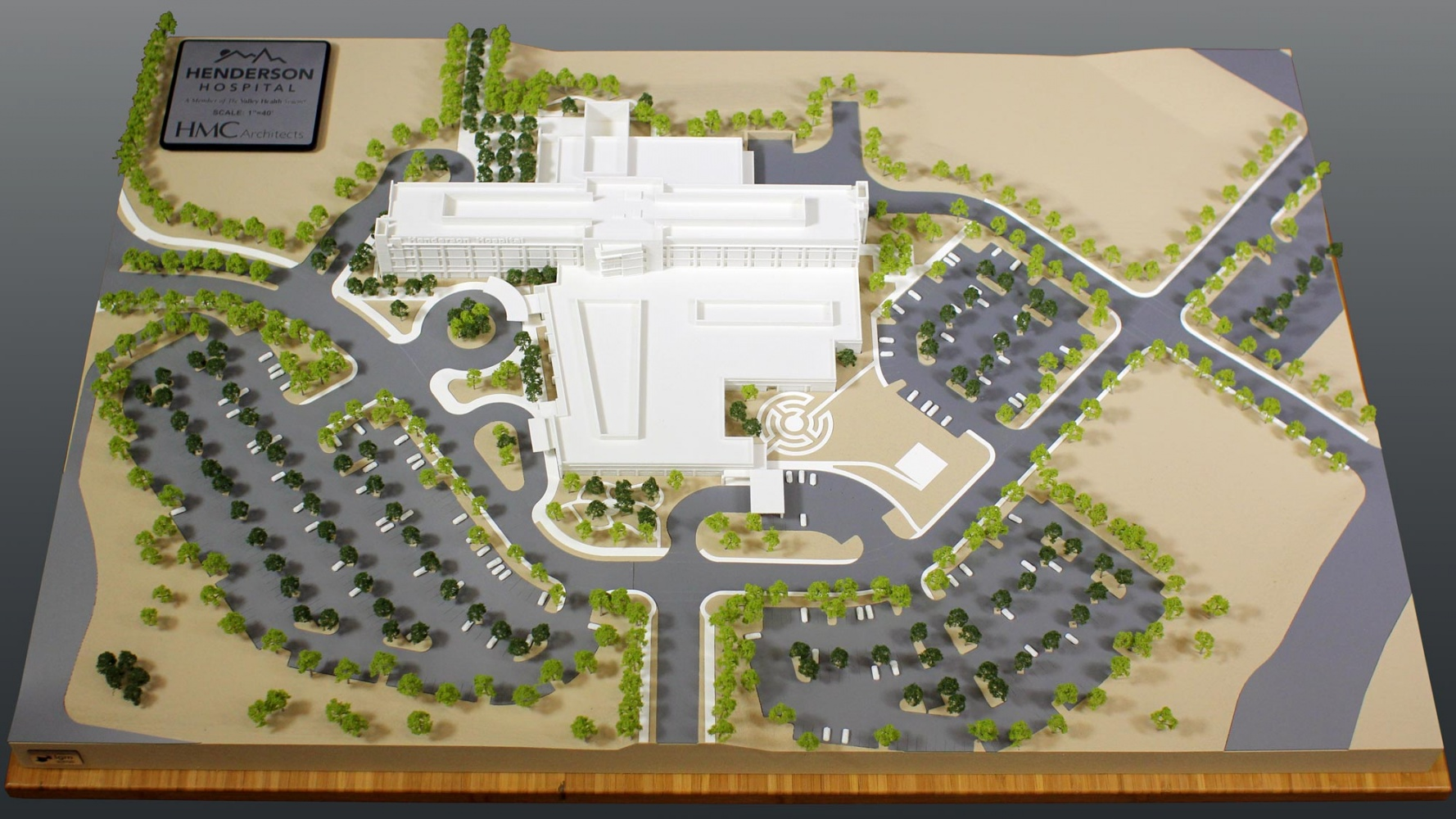 Henderson Hospital architectural model